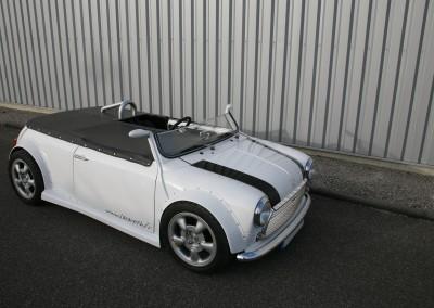 Mini roadster 6
